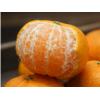 湖南湘西椪柑芦柑整箱10斤当季新鲜水果蜜甜桔子橘子10斤|5斤碰柑