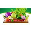 有机汇 有机蔬菜新鲜配送宅配套餐时令农家组合约6斤任选顺丰包邮